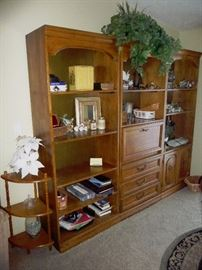 large entertainment and display unit