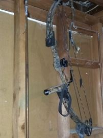 Another Compound Bow