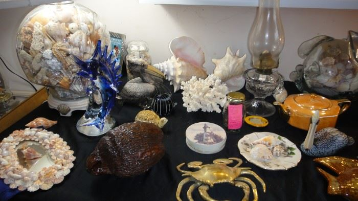 Sea Shells, Sea shells and sea shell decor