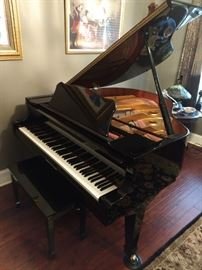Nice Baby Grand! Only about 5 years old!!