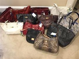 Designer ladies purses -