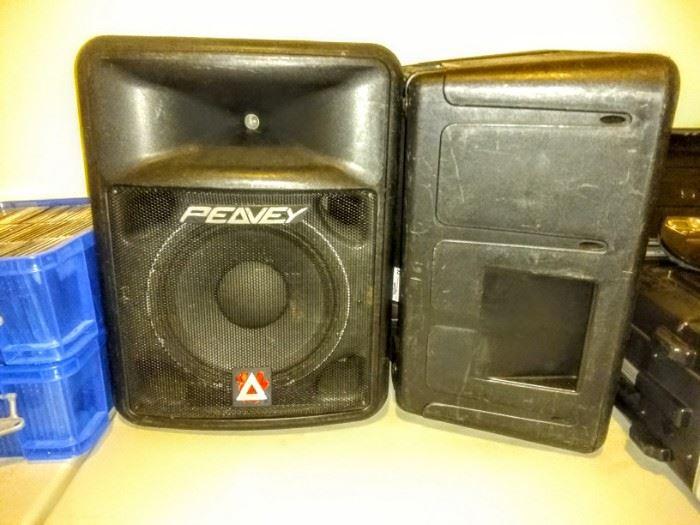 "Two ""Peavy"" Speakers."