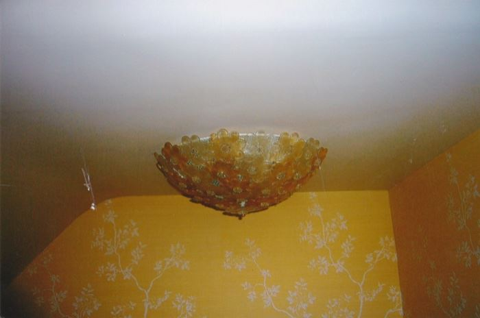 "Flora 16"" Clear  & Gold Flora flush mount"