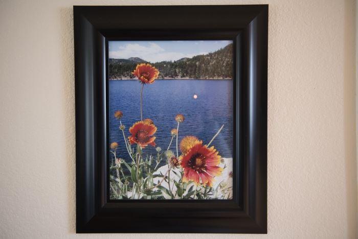 Framed Art-Daisy
