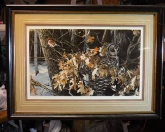 Wild wings Winter oaks Barred owl and finch print ...