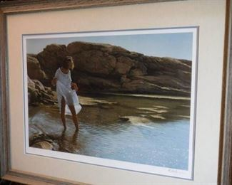 Framed signed and numbered catching the sun By ...