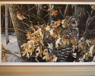 Wild wings Winter oaks Barred owl and finch print ....