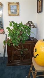 Plant & Small Cabinet