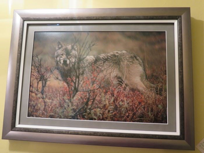 Thomas Mangelsen  photo, framing mat covers the original signature and ltd ed info...