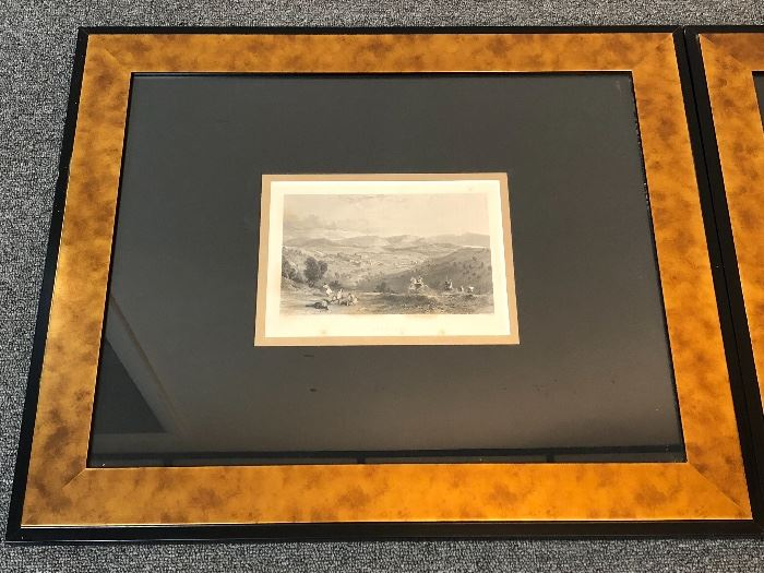 Numerous professionally framed etchings and antique book plates.