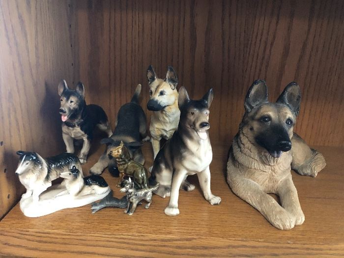 Collection of German shepards