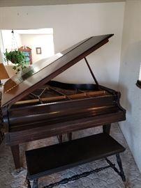 Hallet, Davis & Co baby Grand Piano