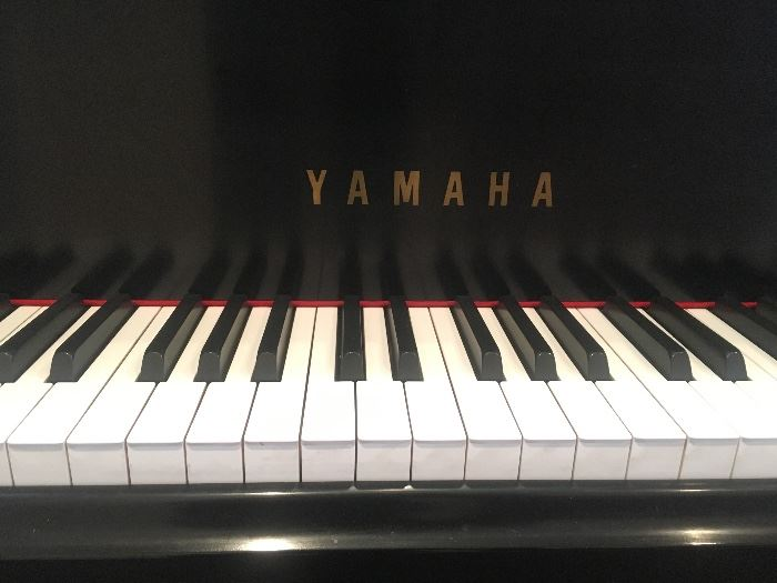 Yamaha Baby