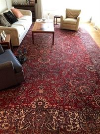 One of many nice large area rugs