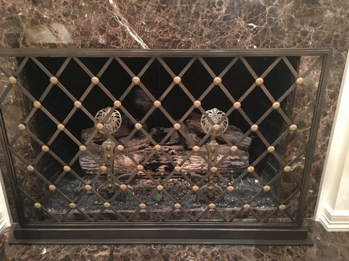 Gorgeous Fireplace Screen & Andirons