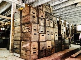 Hundreds of antique wood beer & soda crates