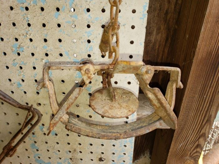 Vintage animal trap, one of many!