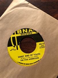 The Five Americans 45 RPM on ABNAK records