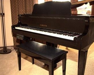 Digital player piano why him dress of songs loaded on it!