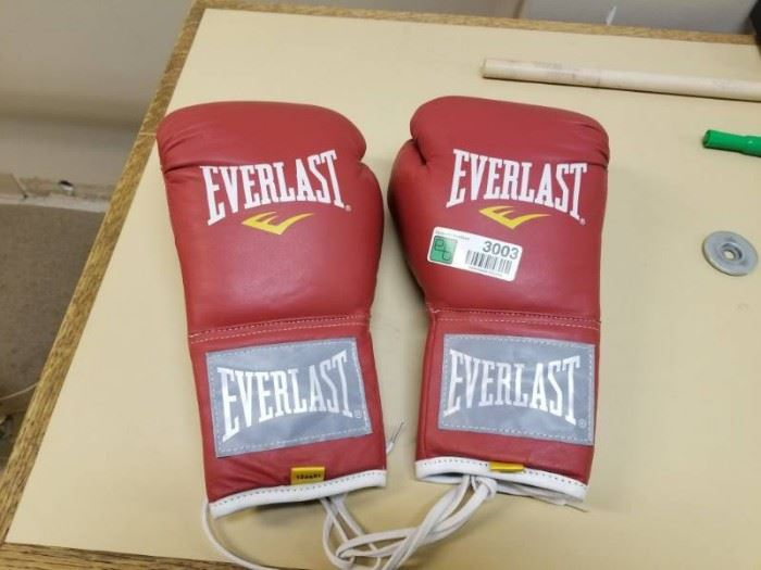 Boxing Gloves 10ozXL