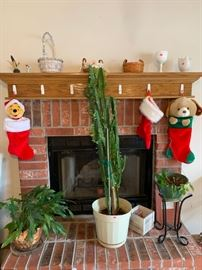 Plants, Christmas stockings, 2 small Longenburger baskets, misc.