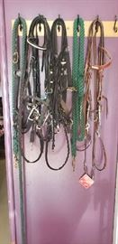 Bridles, Halters, lead Ropes, Bits and much much more