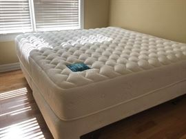 Super Vinyasa by PranaSleep King Bed