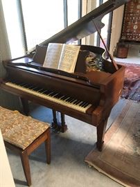 Grand piano 1902 Sohmer grand (according to serial number)  Bought in 1982 and our three sons all had piano lessons. There is a Christmas candle scorch on it, and the C8 key mechanism needs repair.  All original keyes.  Hasn't been tuned in years.