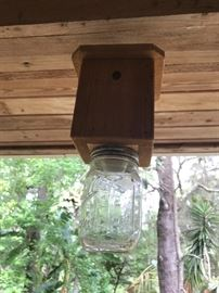 Carpenter Bee catcher ( hmmmmm)