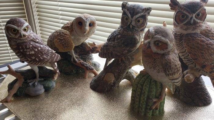 Porcelain owls
