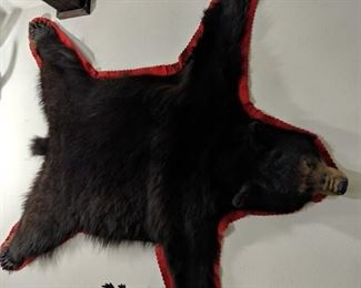 Bear Rug in very good condition
