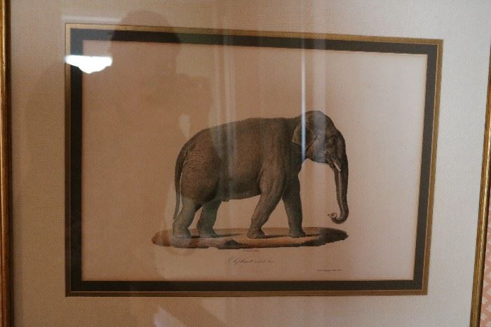 lithograph series
