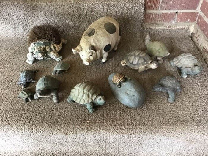 Collection of Turtles and One Pig
