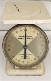 VINTAGE FAMILY SCALE