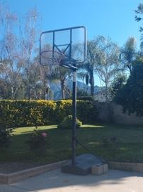 Basketball hoop in great condition!