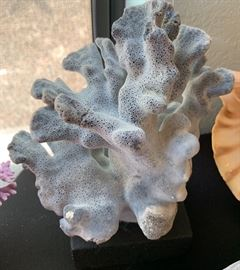 Natural Blue Coral Reef