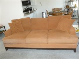 Sofa (needs cleaning)