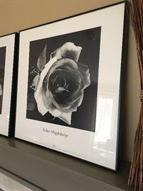 Robert Mapplethorpe framed print