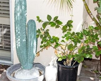Fabulous Patio Furniture and Plants