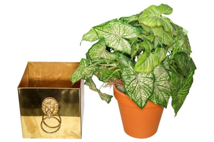 333. Neoclassical Style Brass Planter
