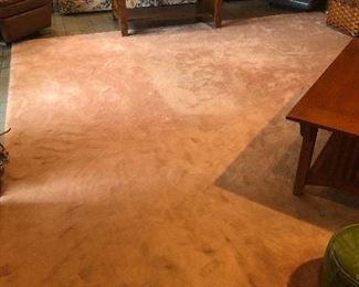Large carpet rug