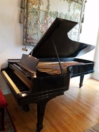 1888 Steinway Model D Concert Grand Piano