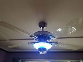 Hampton Bay neon light and ceiling fan