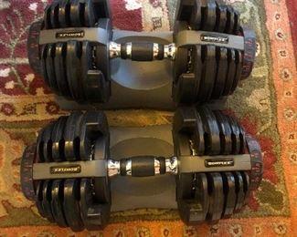 Bowflex handweights