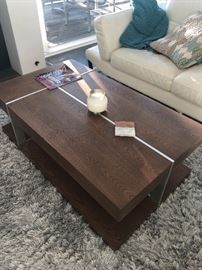 Wood and Aluminum coffee table - white sofa not available - Rug SOLD