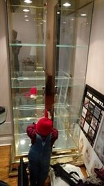 Pair of Beautiful glass display cases