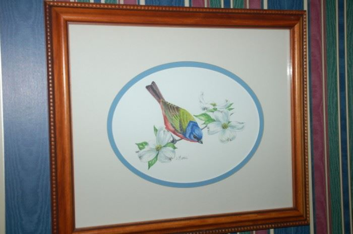 Wildlife by Jay Mizzel, Painted Bunting, in pen