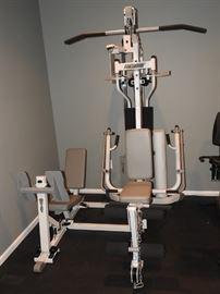 Hoist H310 Gym