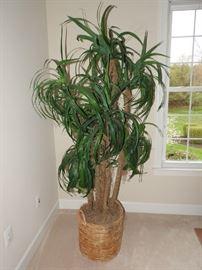Large Faux Plant
