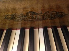 Chickering & Sons (not to be confused with Chickering Brothers) was the first piano manufacturer in America.